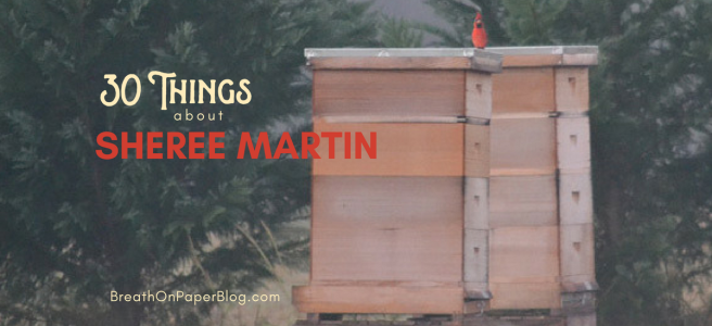 30 Things about Sheree Martin - Cardinal on top of Beehive - Photo by Sheree Martin