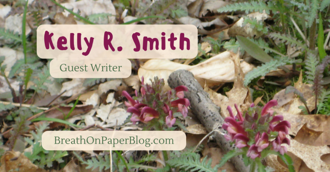 Kelly R Smith - Guest Writer- Breath on Paper Blog - Seek and Find