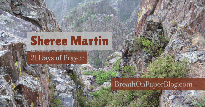 Sheree Martin - Days of Prayer for Breath on Paper Blog - Photo of Black Canyon in Colorado by Sheree Martin, 2010