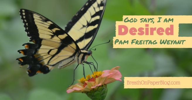 God Says I Am Desired - Pam Freitag Weyant