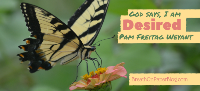 God Says I Am Desired - Pam Freitag Weyant
