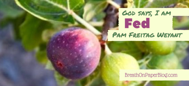 God Says I Am Fed - Pam Freitag Weyant - Breath on Paper Blog